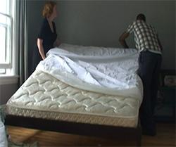 Bed Bug Control In Residences Let S Beat The Bed Bug